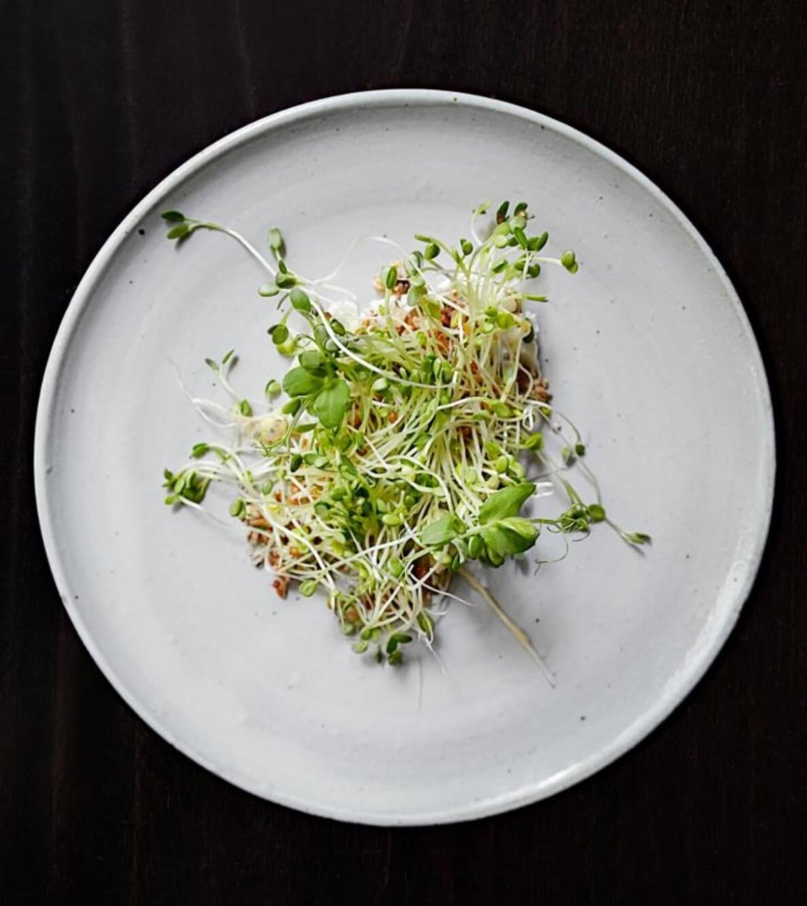 GRAINS, YOGURT, SPROUTS