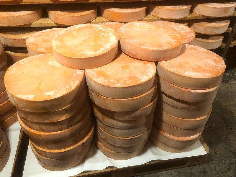 Pile of big pieces of Fontina Chesees