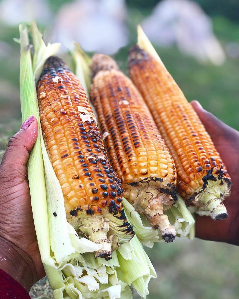Umbhila wekosa