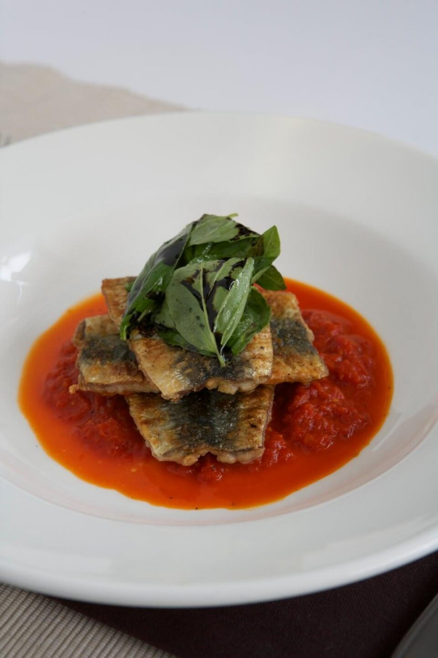 GRILLED SARDINES ON RED PEPPER COULIS WITH FRESH BASIL AND REDUCED BALSAMIC
