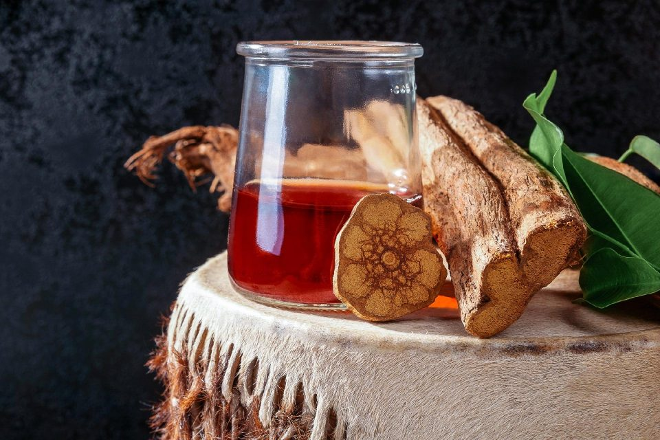 Chá de Ayhuasca