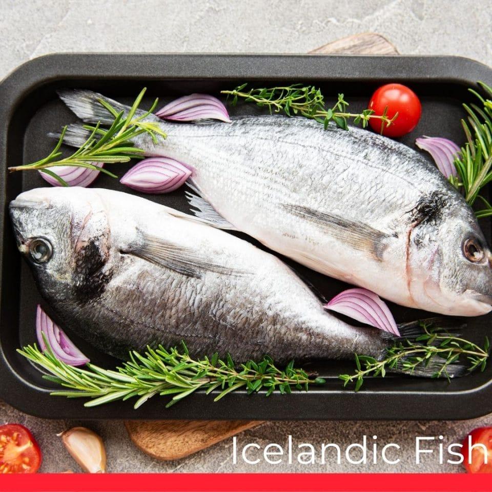 Icelandic Fish