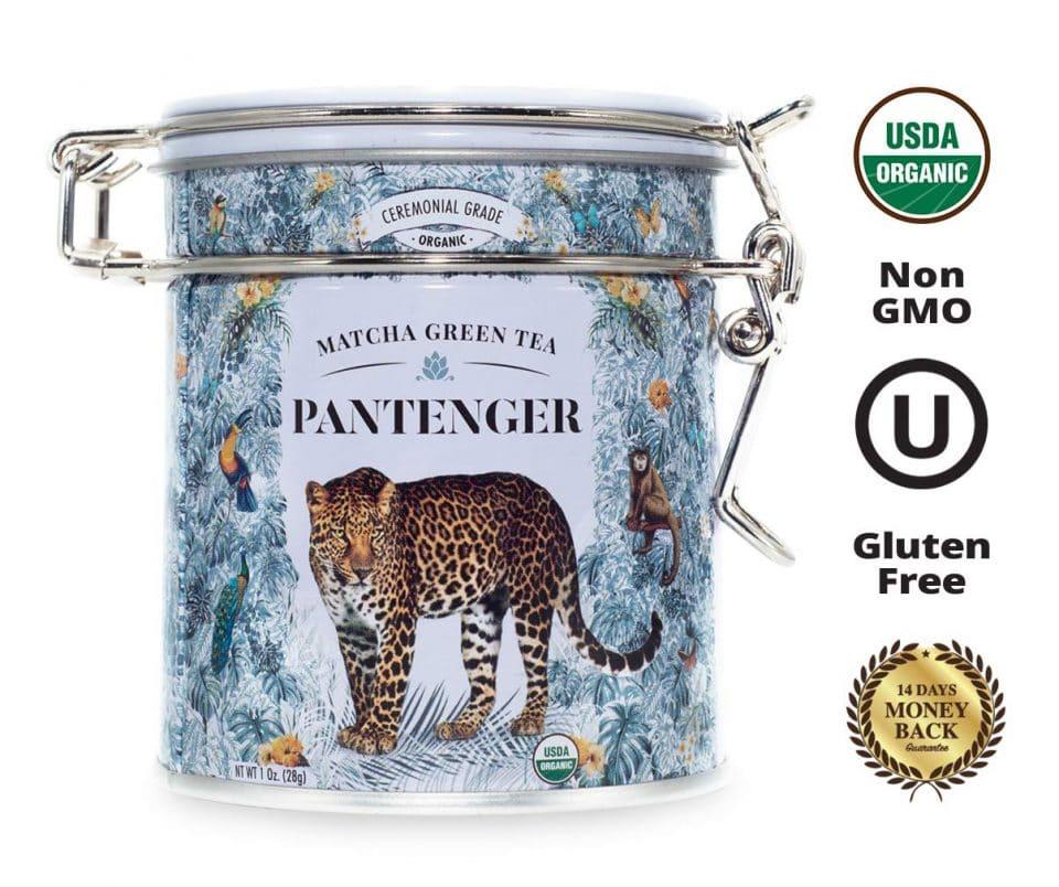 Pantenger by Leopard Matcha