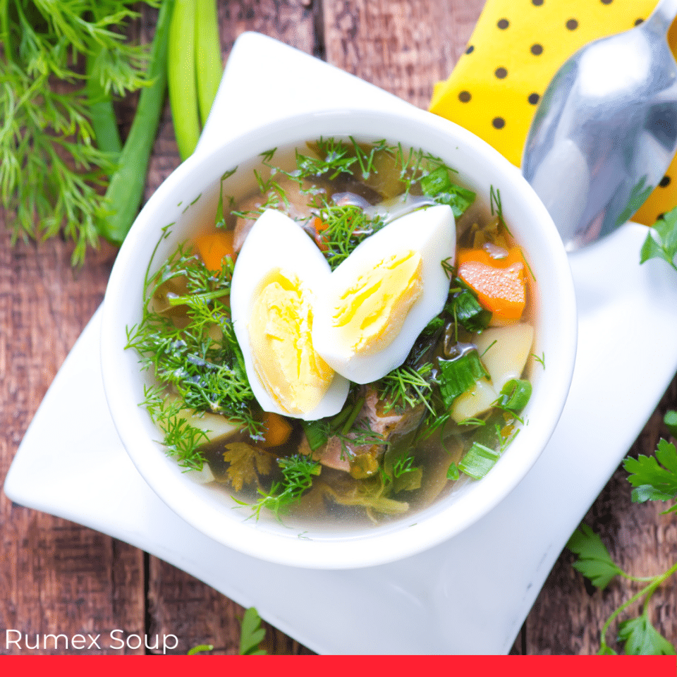 Rumex Soup