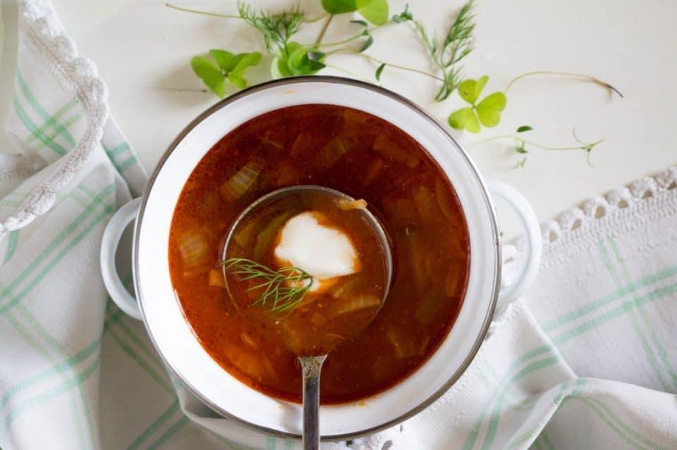 Seljanka Soup