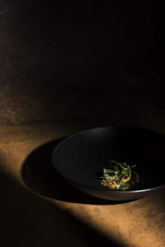 Baby Veal Consommé |Celeriac, Mountain Baby Veal, Lovage Oil, Morels