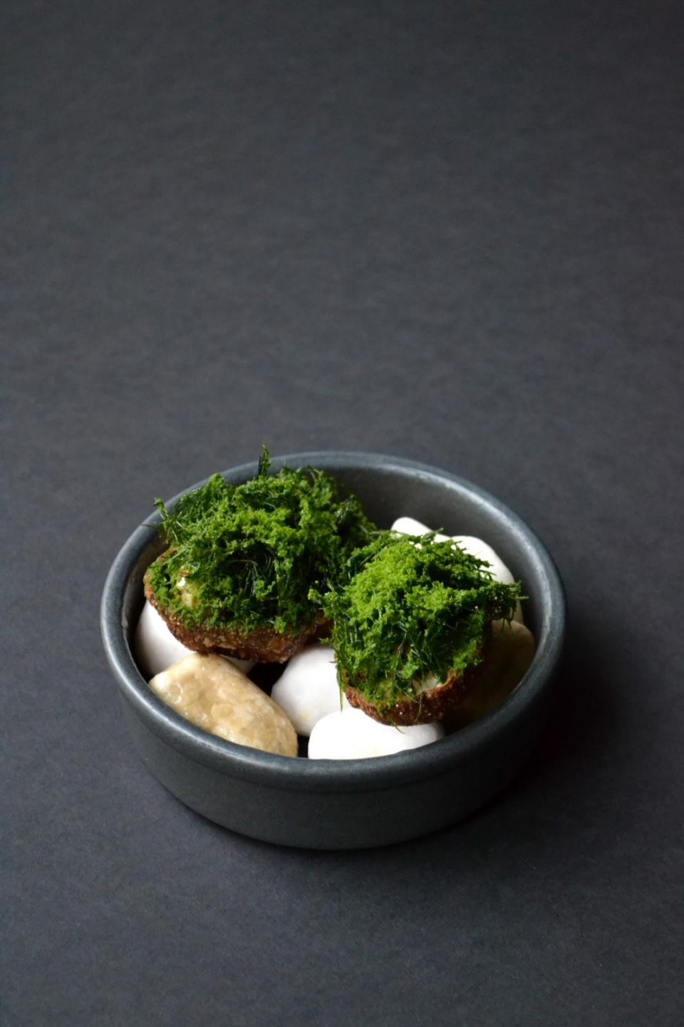 Cured Bream with Malt Puff & Frozen Greens
