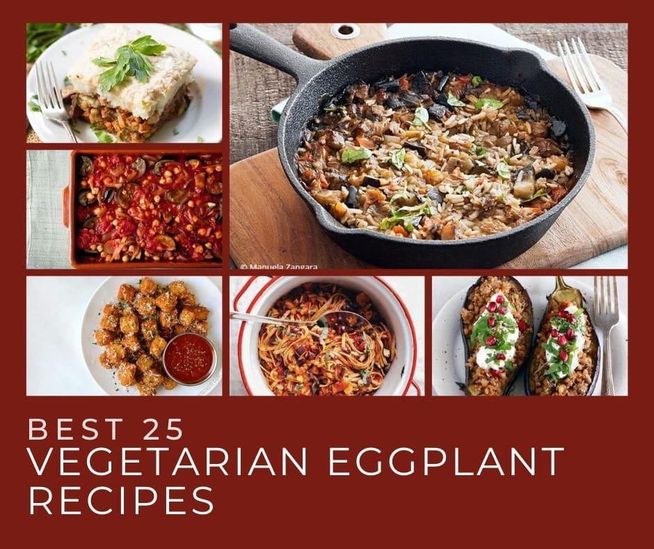 Best 26 Vegetarian Eggplant Recipes