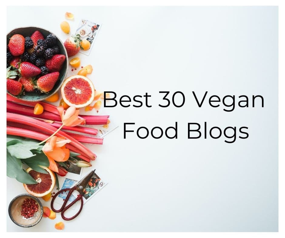 Best vegan blogs
