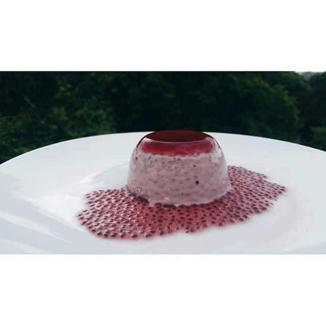 Vegan Panna Cotta with Chia Seeds and Berries