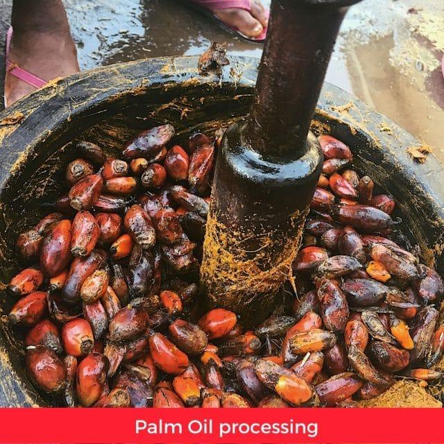 palm oil for Banga soup